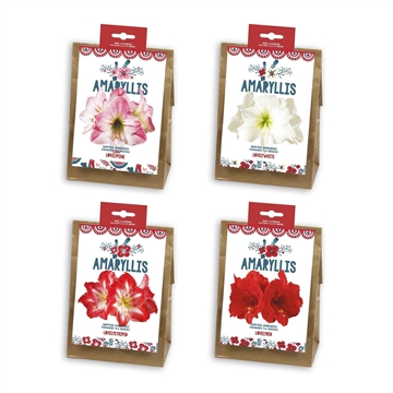 Amaryllis Jul Bag Mixed
