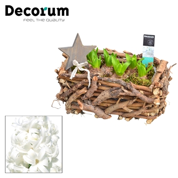 Hyacint Twigs Box HL17792WP [BLACK & WHITE]