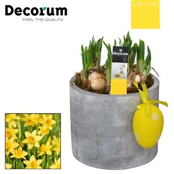 Narcis Ronde Beton Pot HL17225 [YELLOW]
