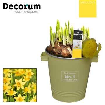 Narcis Colourful Bucket Maxi HL7595 [YELLOW]