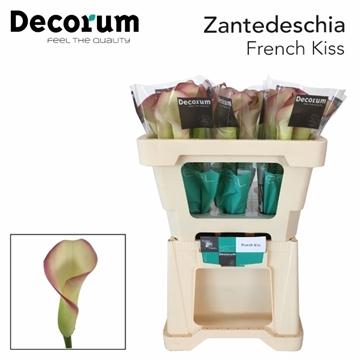 ZANT FRENCH KISS