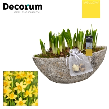 Narcis Boat Wood Look HL15305 [YELLOW]
