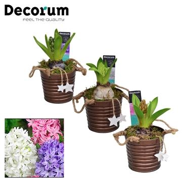 Hyacint Copper Bucket HL15602 [PURE]