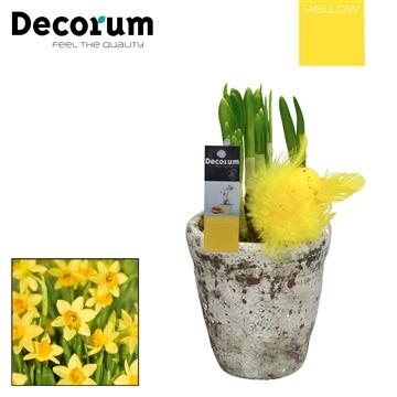 Narcis Belgisch Keramiek HL18365 [YELLOW]