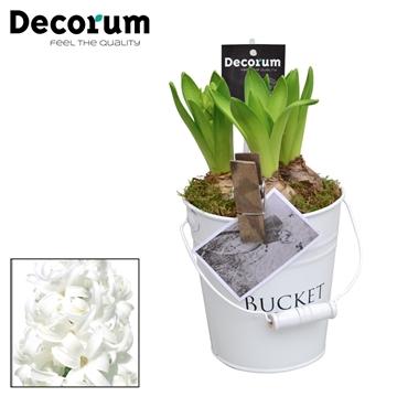 Hyacint White Bucket Maxi HL18543WP [BLACK & WHITE]