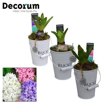 Hyacint White Bucket Mini HL18531 [PURE]