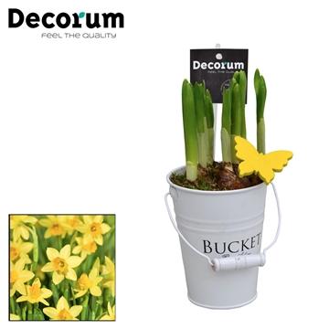 Narcis White Bucket Mini HL18533N