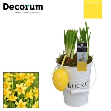 Narcis White Bucket Mini HL18535 [YELLOW]