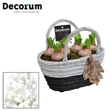 Hyacint Gevlochten Mand Maxi HL18711WP [BLACK & WHITE]