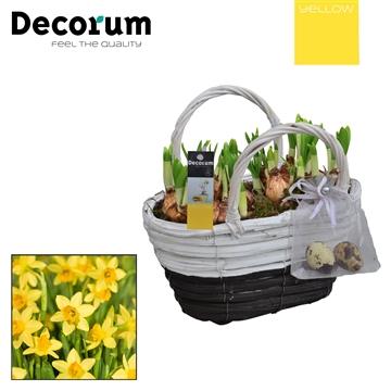 Narcissus Gevlochten Mand Maxi HL18715 [YELLOW]