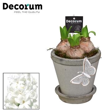 Hyacint Crackle Pot Maxi  HL18213WP [BLACK & WHITE]