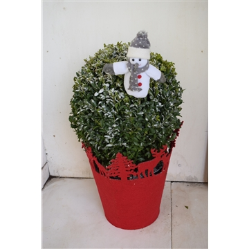Christmas Buxus ball | Kerst Buxusbol met vilten cover en bijsteker | bol 25-28 cm