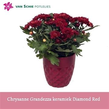 Chrysanne Grandezza keramiek DIAMOND Red