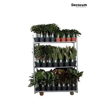 MIXKAR 240168 (Decorum) 7