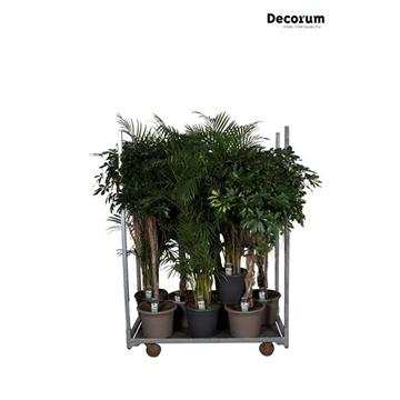 MIXKAR 240170 (Decorum) 9