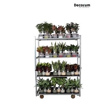 MIXKAR 240179 (Decorum) 18