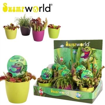 Swampworld p9