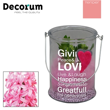 Hyacint Giving Love Maxi HL18844PP [TENDER]