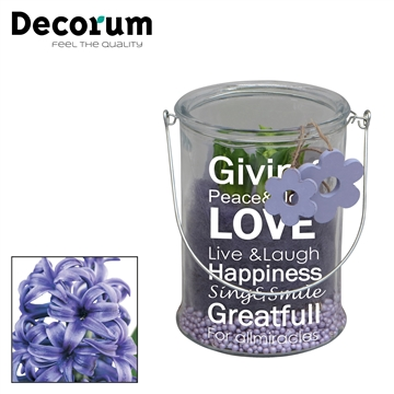 Hyacint Giving Love Maxi HL18843BP [CHARMING PURPLE]