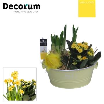 Calandiva & Narcis Colourful Bucket Schaal HL28570 [YELLOW]
