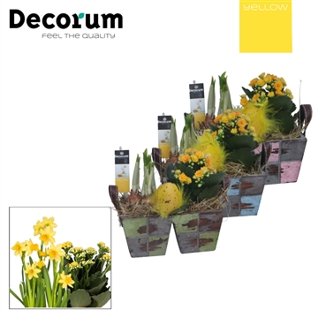 Hout Duo met hengsel HL25650RO [YELLOW]