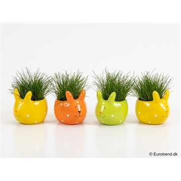 Eleocharis in Easter ceramic