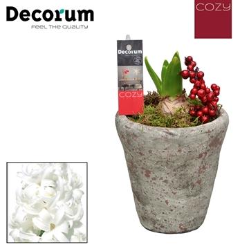 Hyacint Belgisch Keramiek HL18367WP [COZY]