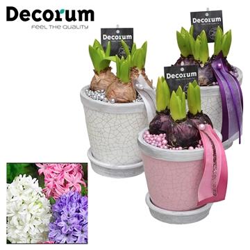 Hyacint Crackle Pot Maxi  HL18211 [LOVELY COLORS]