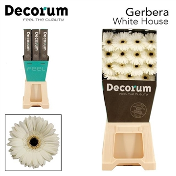 GE GR White House DiaDecorum