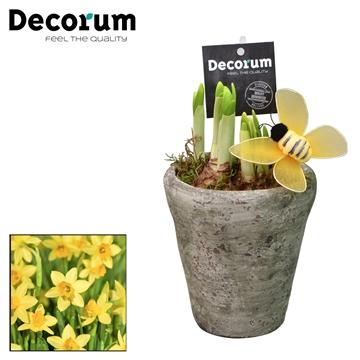 Narcis Belgisch Keramiek HL18363N