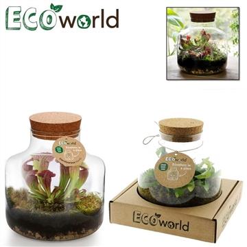 Ecoworld vleeseter biosphere basis glas