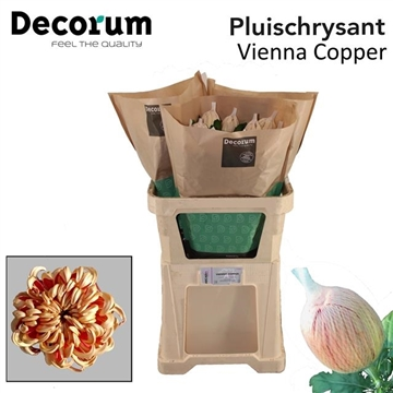 CHR G VIENNA COPPER DECORUM