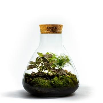 Erlenmeyer Ecosystem Medium - Botanic Mix