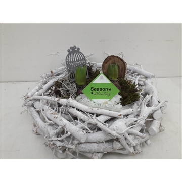Krans hyacinth klein