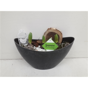 Melamine boot hoog Hyacinth