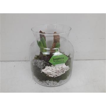 Glas melkbus hyacinth