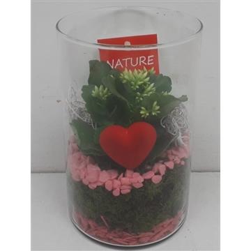 Glas cilinder roze met hartje