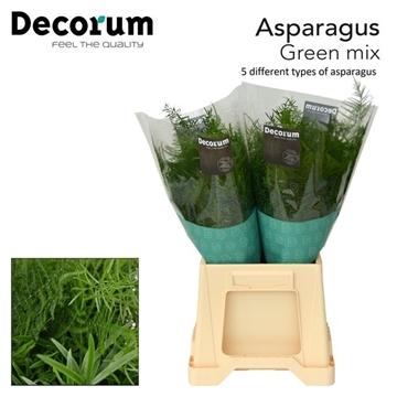 Asp exclusive green mix
