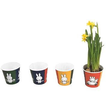 Narcis in potcover miffy/nijntje ®