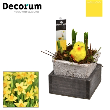 Narcis Square Wood Tray HL18245 [YELLOW]