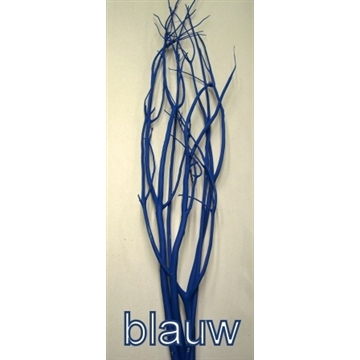 MITSUMATA BLAUW/BLUE P.TAK