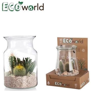 Ecoworld cactus corky glas
