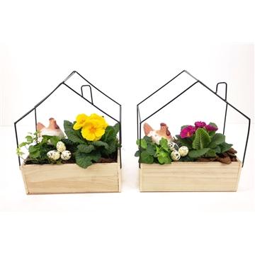 Hout bak met huis frame naturel L 26x15cm