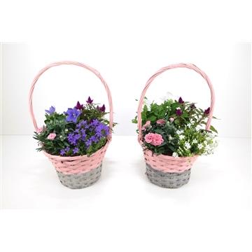 Hengselmand XL grijs/roze
