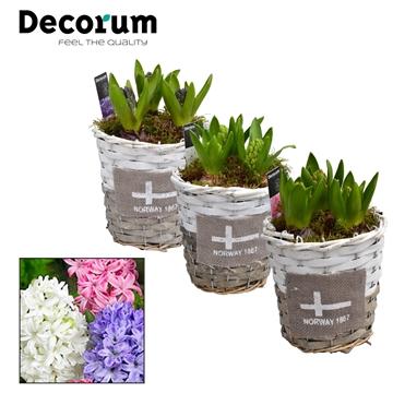 Hyacint Gevlochten Mand Rond HL15701 [PURE]