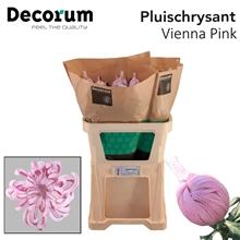 Artikel #533557 (ViennaP 3-D: Chr G Vienna Pink)