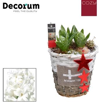 Hyacint Gevlochten Mand Rond HL15706WP [COZY]