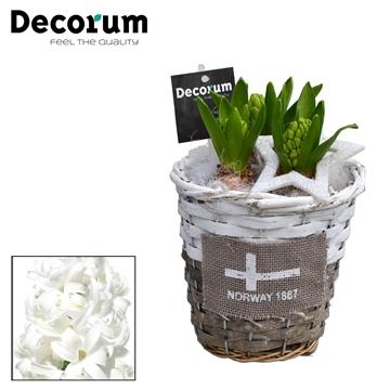 Hyacint Gevlochten Mand Rond HL15702WP [BLACK & WHITE]