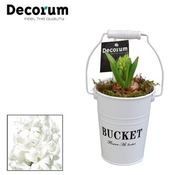 Hyacint White Bucket Mini HL18531WP [BLACK & WHITE]