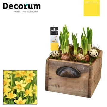 Narcis Wooden Drawer HL10755 [YELLOW]